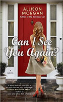Can I See You Again? - Allison Morgan